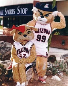 Arizona Daily Wildcat File Photo